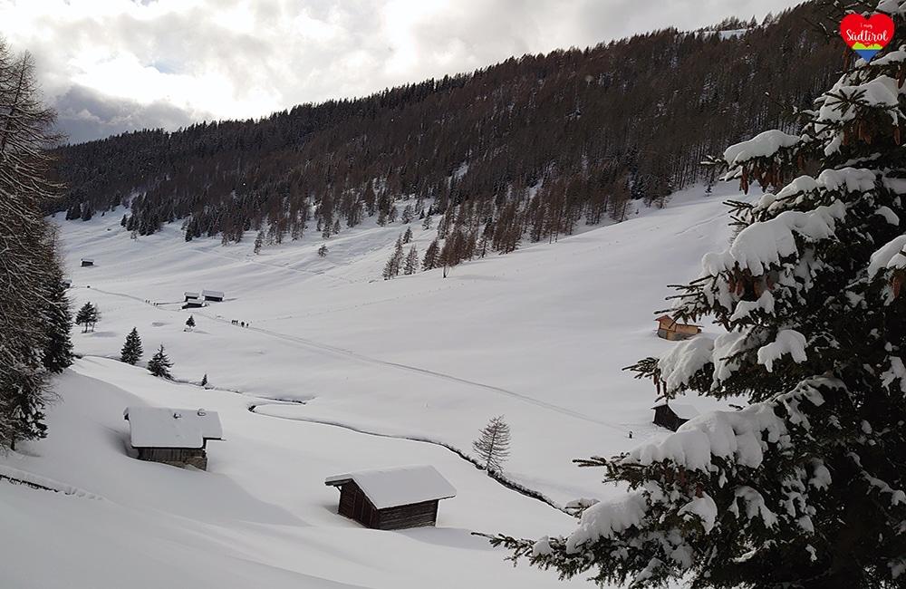 Winterwanderung Altfsstal - Meransen/Südtiroll
