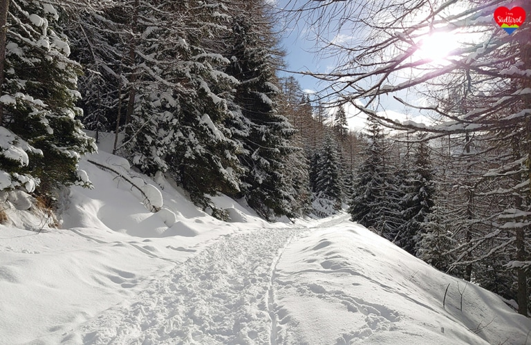 Winterwanderung Altfsstal - Meransen/Südtirol