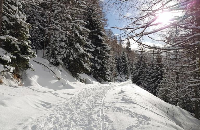Altfasstal Winterwanderung - Almen in Südtirol