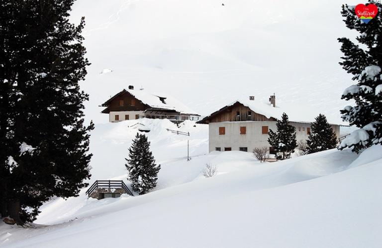 Wintertour zur Gampenalm - Gampenalm