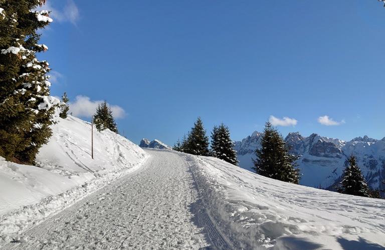 Plose - Rossalm - Winterwanderung