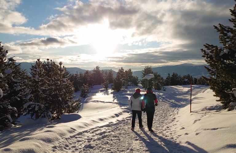 Plose - Rossalm - Almen Südtirol - Winterwandern