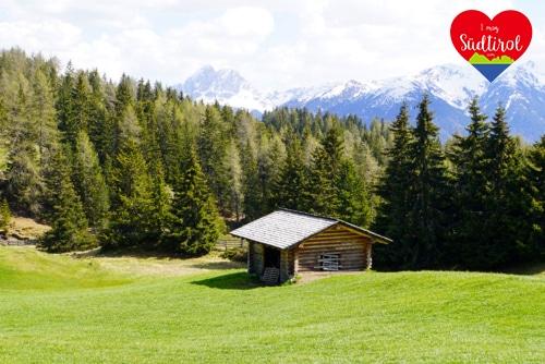 Read more about the article Wander- oder E-Biketour zur Rastnerhütte (Rodeneckeralm)