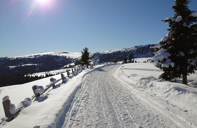 Villanderer Alm . Winterwanderung - Stöfflhütte