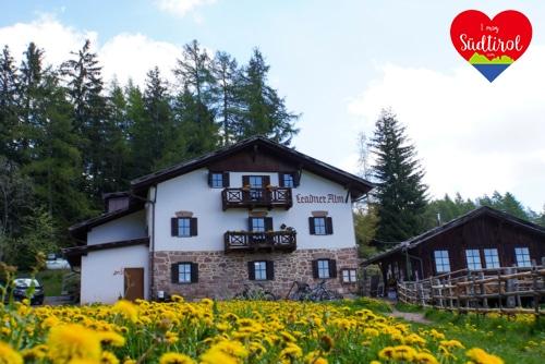 Read more about the article Tour zur Leadneralm