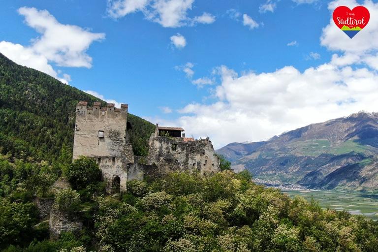 Burg-Obermontani